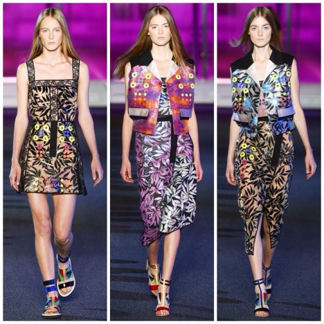 Spring.Summer 2015 Peter Pilotto 5